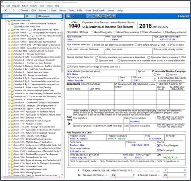 A view of multiple forms displayed while accessing TaxAct Professional software
