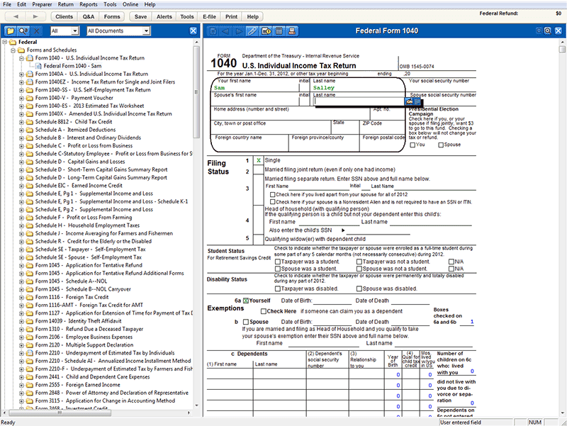 A view of federal form 1040, US Individual Income Tax Return